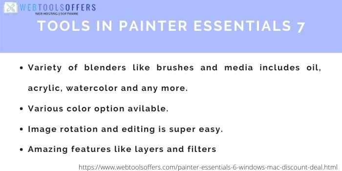 Painter Essential 7 Coupon