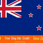 $100 Bing Ads Coupon New Zealand users
