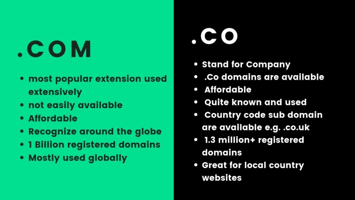 .com vs .co differences